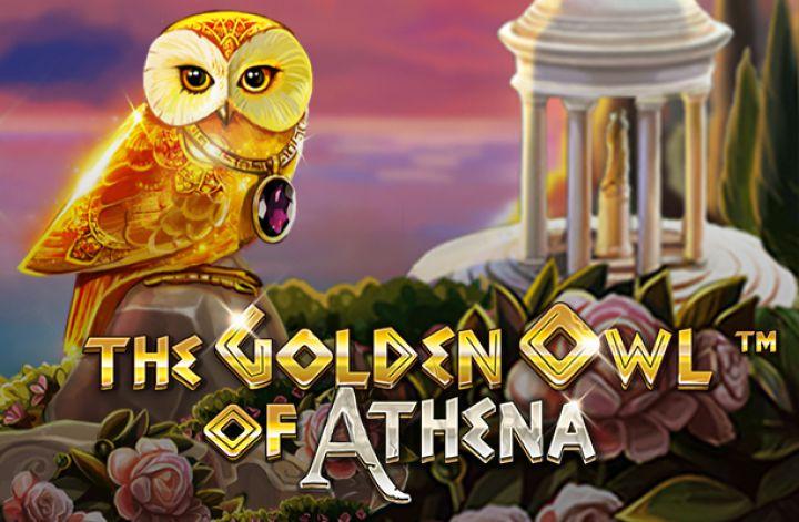 the golden owl of athena gra hazardowa