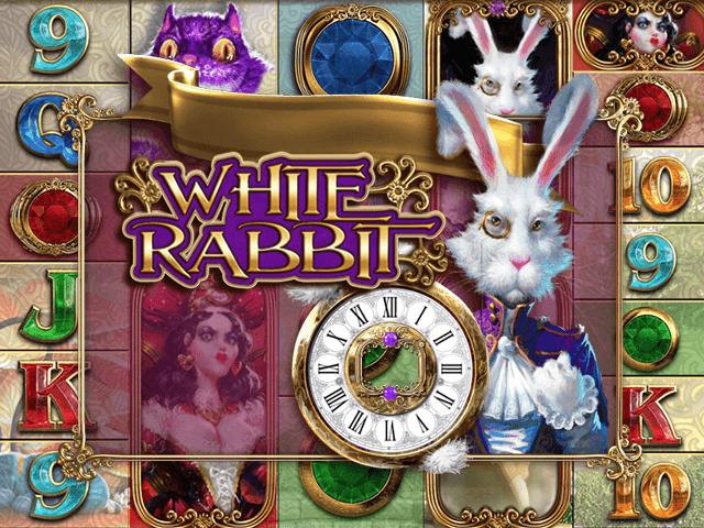 white rabbit gra